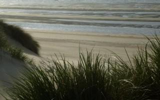 zee strand en duinen in koksijde